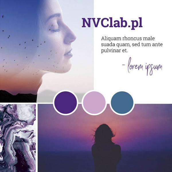 NVClab.pl