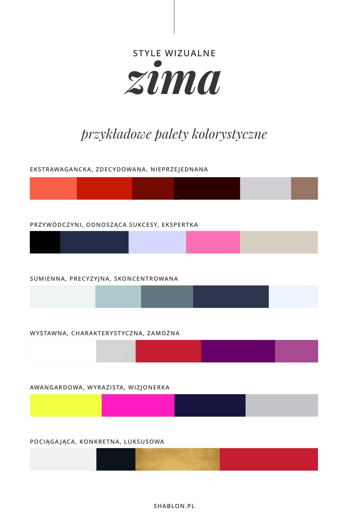zimowy wizerunek firmy paleta kolorów